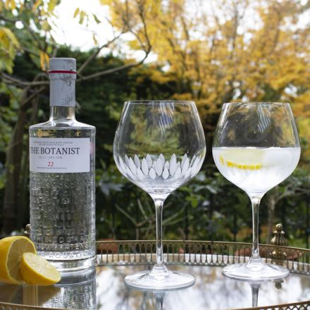 Zest - 2 Gin and Tonic (G&T) Copa Glasses, 210mm (Gift Boxed)